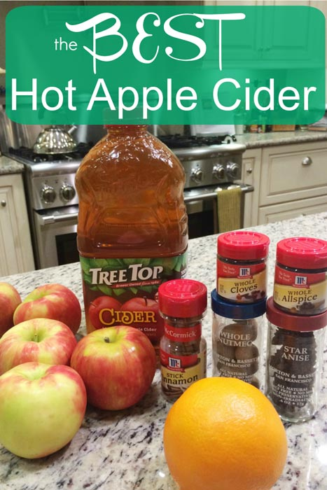 Make the BEST hot apple cider just in time for Christmas morning! You can even spike it up. Here's a recipe I can be proud of making! Cheers!