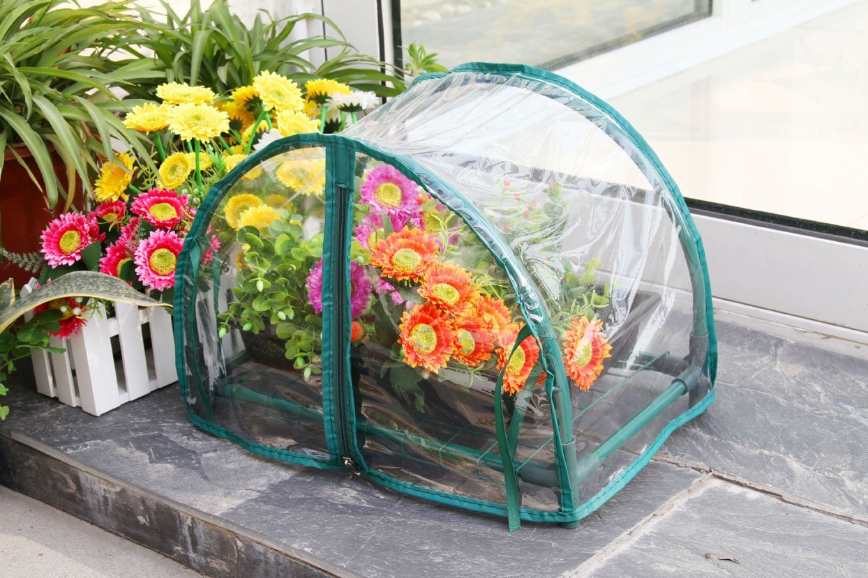 Build a greenhouse to have a year round garden. It's most useful in the winter time, and you can even turn it into a studio, or workspace.